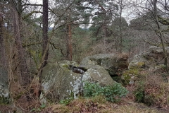 ACP - Parcours libre - 200 km - Fontainebleau